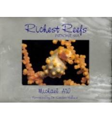 richest-reefs-indonesia