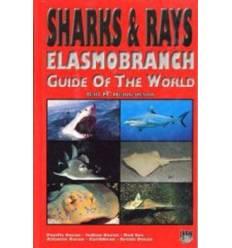 sharks-rays