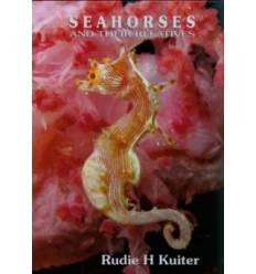 seahorses-and-their-relatives