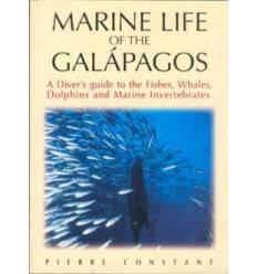 marines-life-des-galapagos