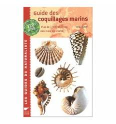 guide-des-coquillages-marins