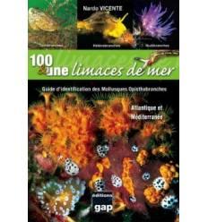 100-une-limaces-de-mer