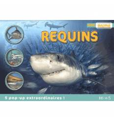 Doc Animé - Les REQUINS - 5 Pop up extraordinaires