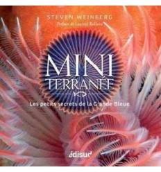 Mini Terranée- Steven Weinberg